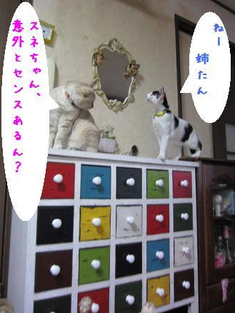 b0151748_1256179.jpg