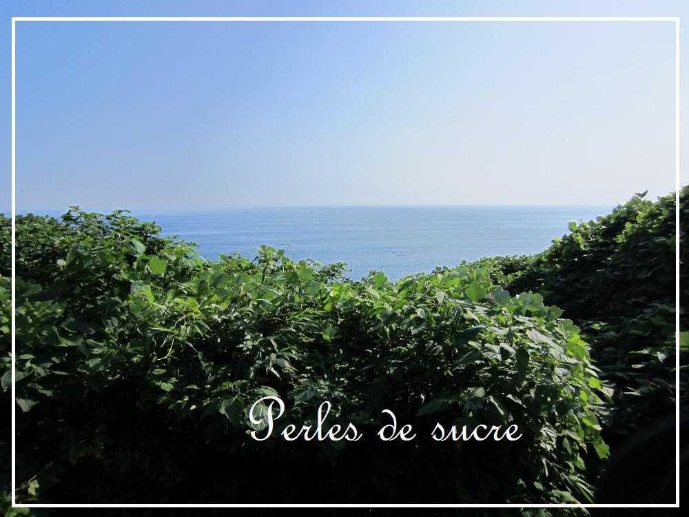 江の島へ  。。。夏_f0199750_1282111.jpg