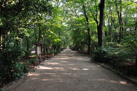 早朝散歩 下賀茂神社_e0164563_11373865.jpg