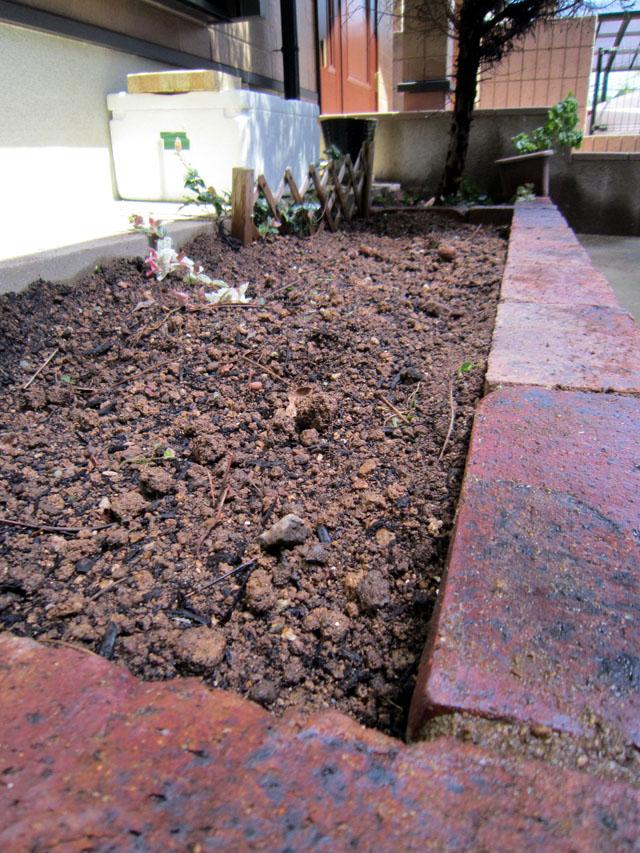 いちごと堆肥と自画像・・・阿野音楽教室_f0051464_17445259.jpg