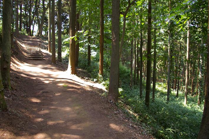 下草刈りで六国見山森林公園の散策がより快適に_c0014967_18473454.jpg
