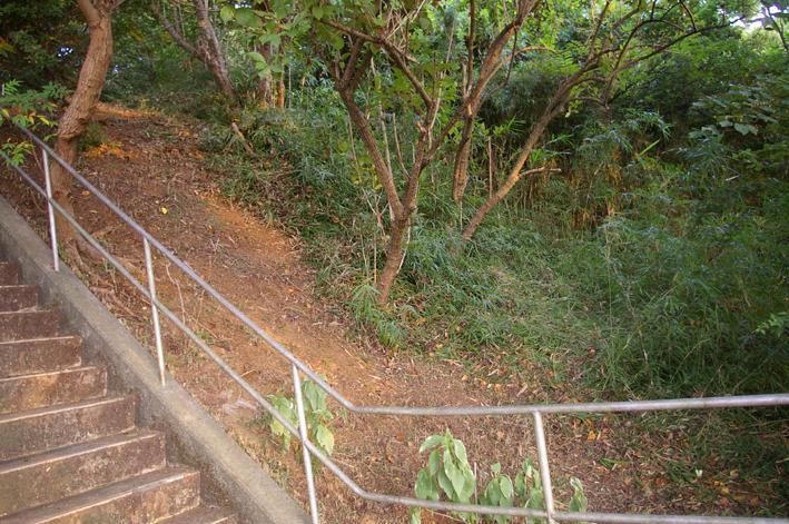 下草刈りで六国見山森林公園の散策がより快適に_c0014967_18482454.jpg