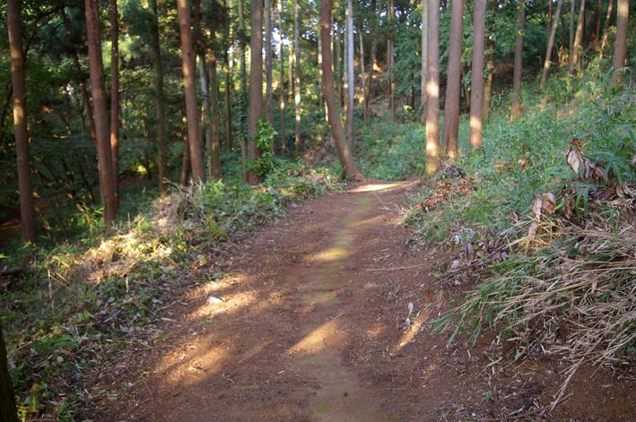 下草刈りで六国見山森林公園の散策がより快適に_c0014967_18492848.jpg