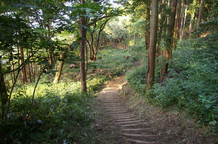 下草刈りで六国見山森林公園の散策がより快適に_c0014967_1849930.jpg