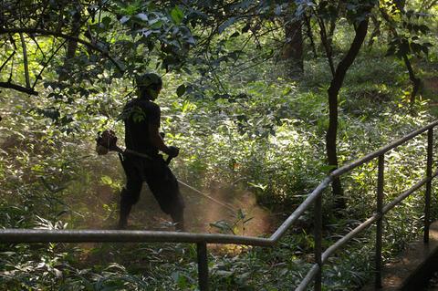 下草刈りで六国見山森林公園の散策がより快適に_c0014967_18501795.jpg