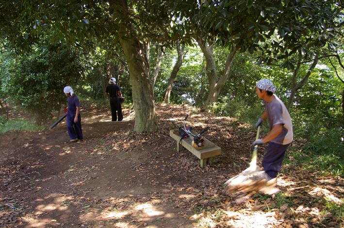 下草刈りで六国見山森林公園の散策がより快適に_c0014967_185053100.jpg