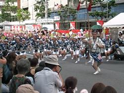 2011高円寺阿波踊りを見ました。_d0126473_031474.jpg