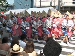 2011高円寺阿波踊りを見ました。_d0126473_0325821.jpg