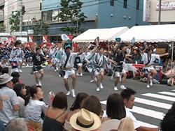 2011高円寺阿波踊りを見ました。_d0126473_034498.jpg