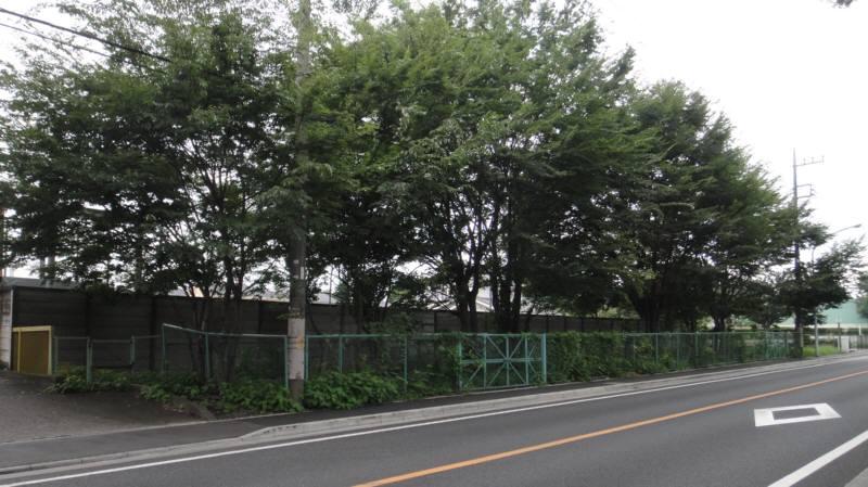 小川用水親水整備工事_f0059673_2362959.jpg