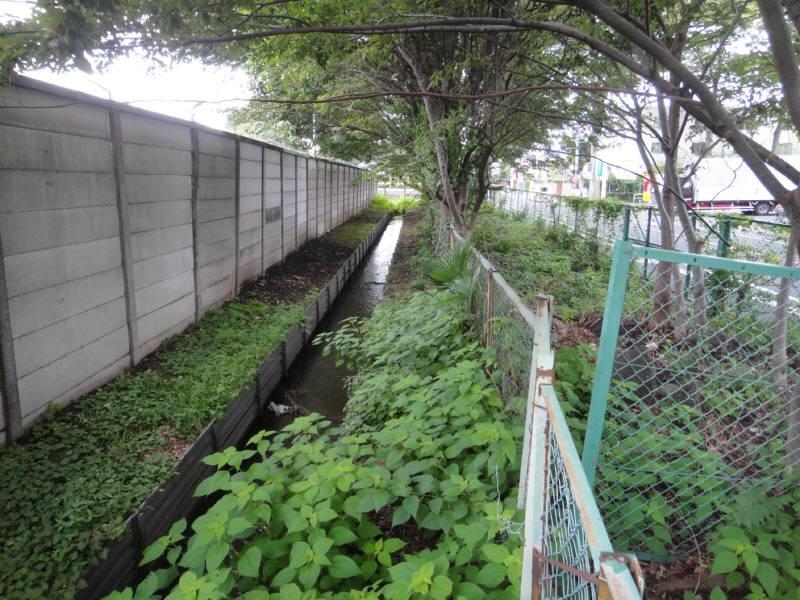 小川用水親水整備工事_f0059673_2365100.jpg