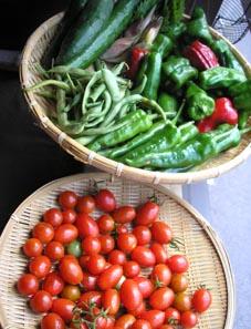 夏野菜便_e0055098_073578.jpg