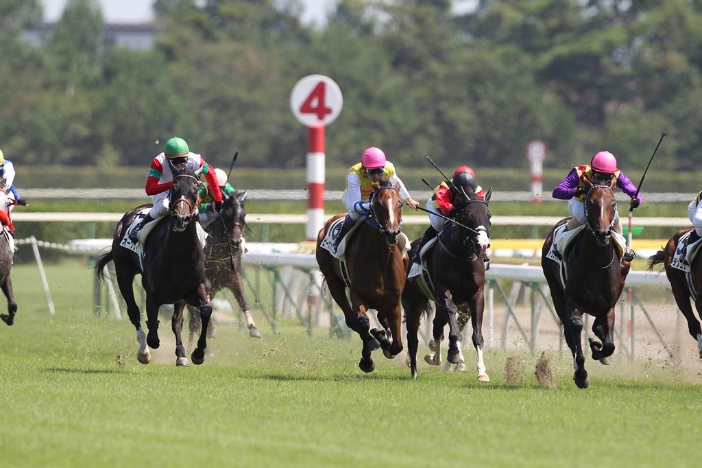 2011年8月28日 新潟記念_f0204898_112443.jpg