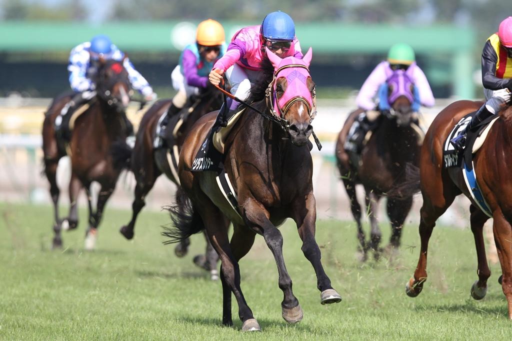 2011年8月28日 新潟記念_f0204898_118915.jpg