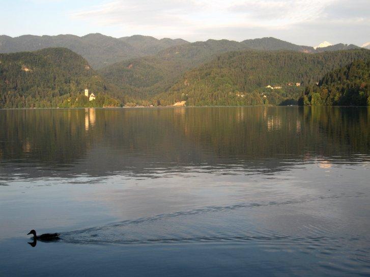 クロアチア編(5):ブレッド湖(10.8)_c0051620_620227.jpg
