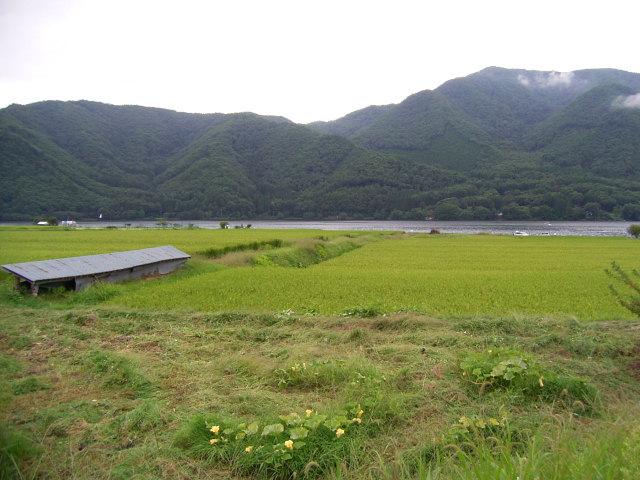 長野の旅_b0206421_1711364.jpg