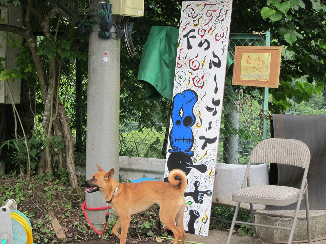 夏写真!at ひかり祭り_b0038425_16592337.jpg