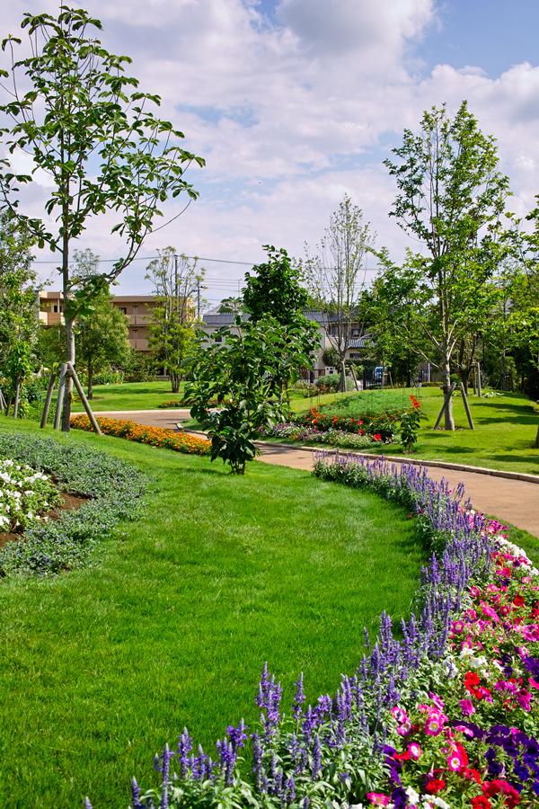 夏のDP2x スナップ(後編) ゆいの花公園_c0223825_6563428.jpg