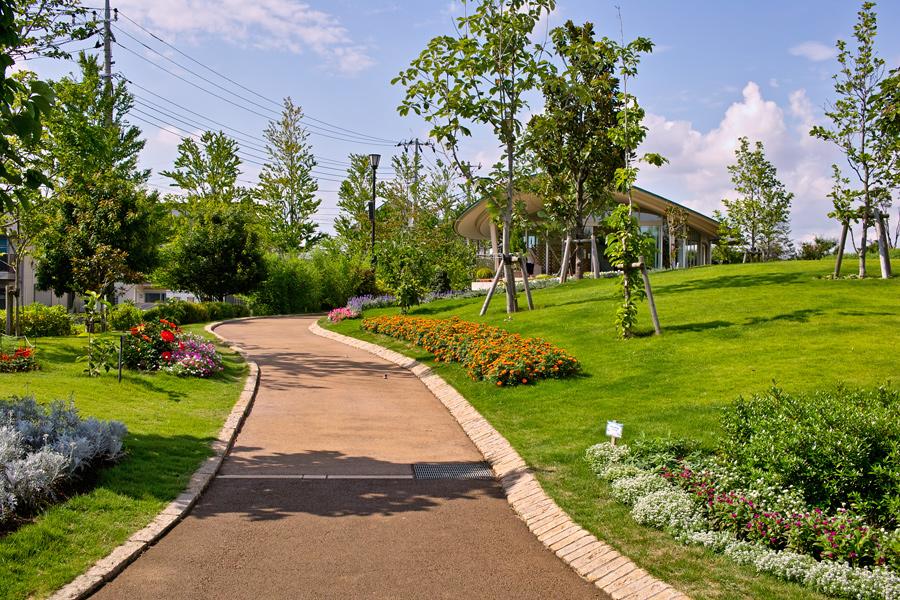 夏のDP2x スナップ(後編) ゆいの花公園_c0223825_658386.jpg