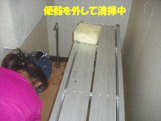 内装・クロス工事_f0031037_20331932.jpg