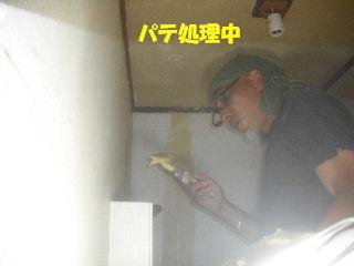 内装・クロス工事_f0031037_20332755.jpg