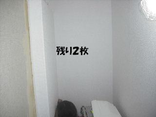 f0031037_20342667.jpg