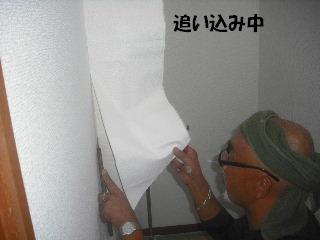 内装・クロス工事_f0031037_20343570.jpg