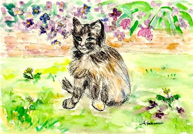 171. 猫_e0233674_614022.jpg