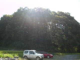 川崎から小淵沢の田んぼの間に移住して・・・体調は・・_a0211886_9594486.jpg
