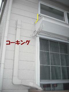 今日も二ヵ所_f0031037_21262458.jpg