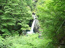 徳島県那賀町の沢登り・1日目_b0156456_20112915.jpg