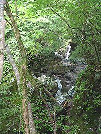 徳島県那賀町の沢登り・1日目_b0156456_20291382.jpg