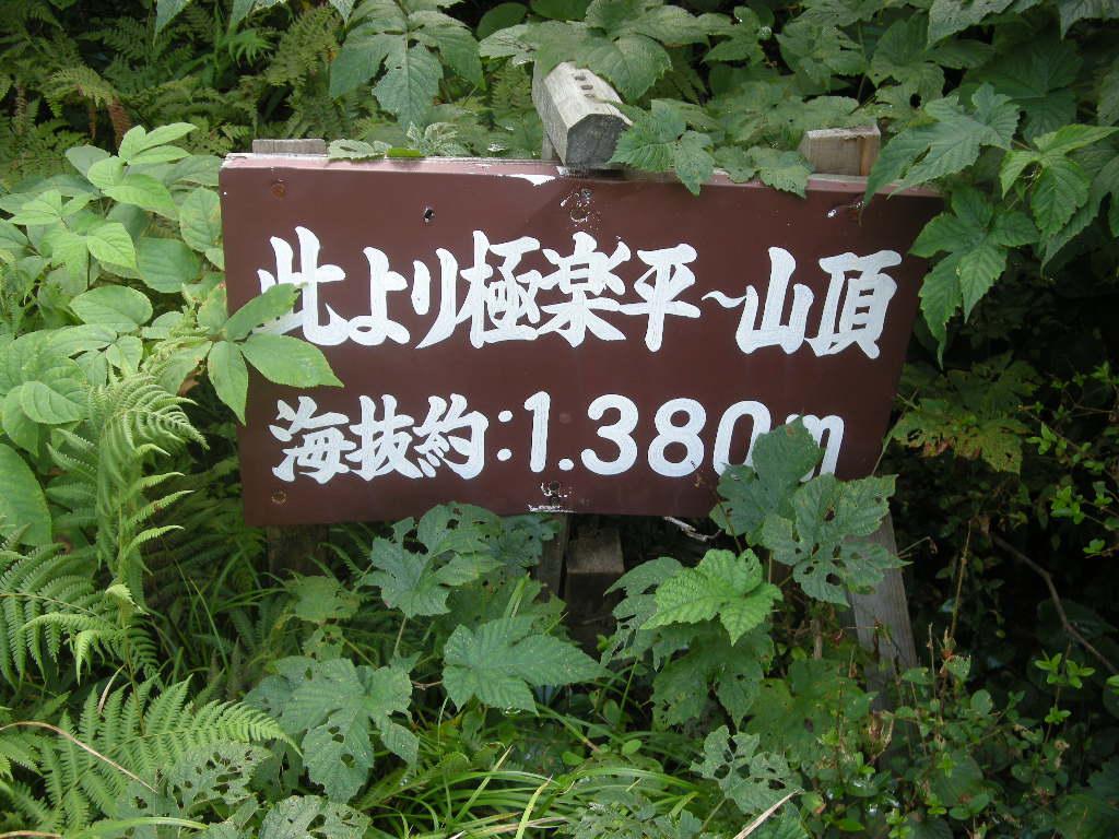 b0185573_16254815.jpg