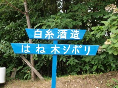 夏休み_f0232994_3225784.jpg
