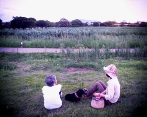 母とツバメと夕暮れ原っぱ。_d0077603_1310784.jpg