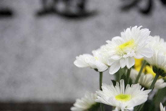 サヨナラ夏ノ日_e0235910_8153518.jpg