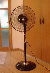 扇風機おきました_e0234016_16251487.jpg