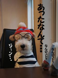 ハナゲたいふうの「め」_d0196124_17141659.jpg