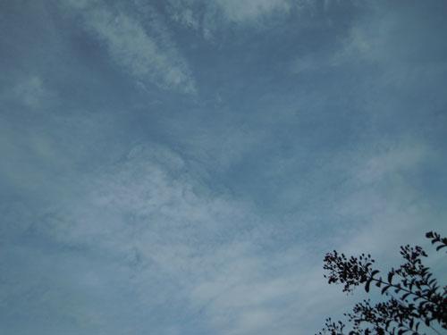 9月のはじめの朝_e0097534_15205279.jpg