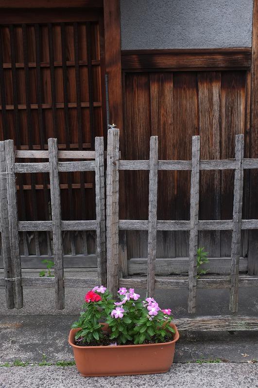 奈良町界隈 昭和の香り_f0050534_7272186.jpg