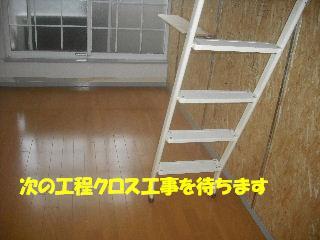 f0031037_2163393.jpg