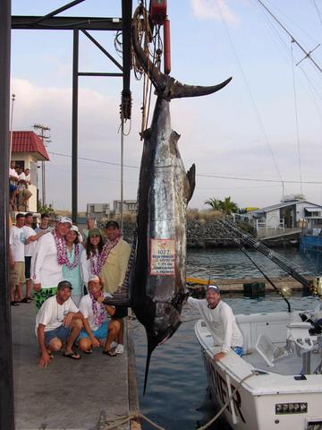 海には出られませんが、巨大魚の夢でも・・・ 【カジキ・マグロトローリング】_f0009039_10253028.jpg
