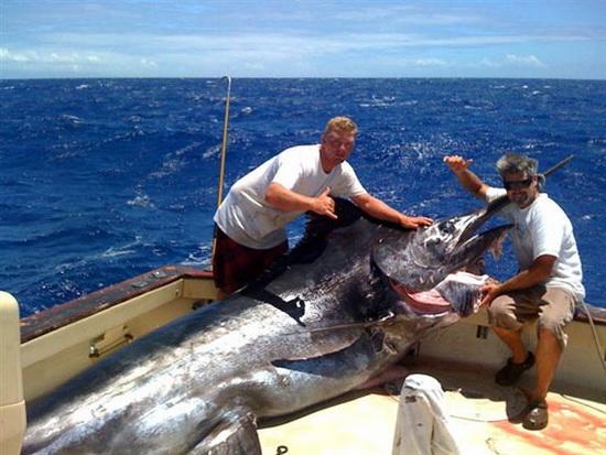 海には出られませんが、巨大魚の夢でも・・・ 【カジキ・マグロトローリング】_f0009039_10302252.jpg