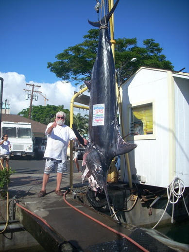 海には出られませんが、巨大魚の夢でも・・・ 【カジキ・マグロトローリング】_f0009039_103046.jpg