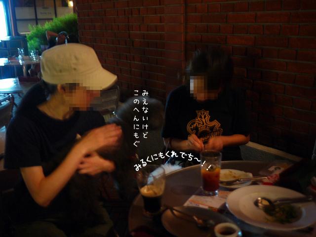 d0113080_19523698.jpg