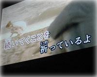 f0065896_19354480.jpg