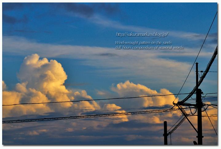 残照積乱雲。_f0235723_944133.jpg