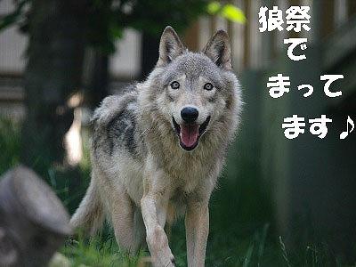 c0191646_0154588.jpg