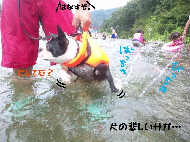 ★BBQと川遊び at 秩父 親鼻河原★_d0187891_2101627.jpg