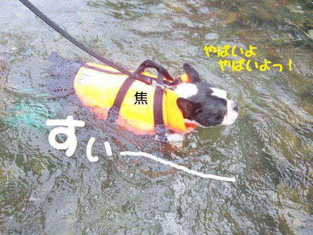★BBQと川遊び at 秩父 親鼻河原★_d0187891_2102793.jpg